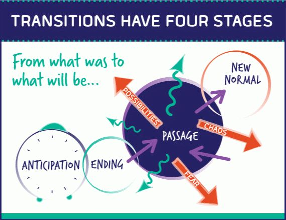 SMI_Graphic1-Transistions_have_4_Stages